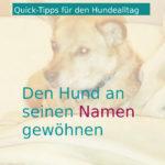 Quick-Tipps für den Hundealltag: Den Hund an seinen Namen gewöhnen