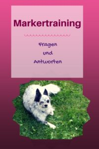 Markertraining
