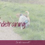 Ist Online-Hundetraining sinnvoll?