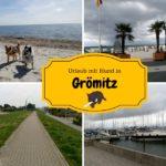 Ostseeurlaub: Mit den Hunden in Grömitz
