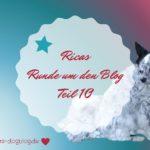 Ricas Runde um den Blog #10 – Lesetipps Monat August