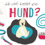 Hundehaltung: Diese Kosten komen auf dich zu [miDoggy Parade]