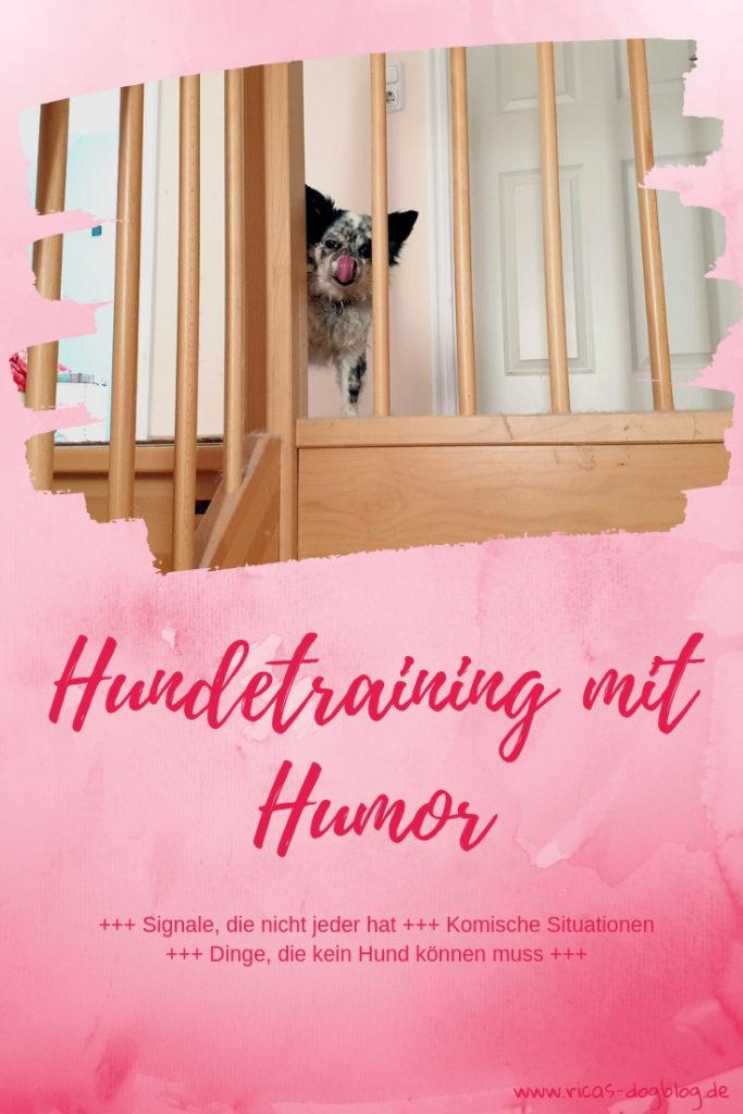 Hundetraining mit Humor
