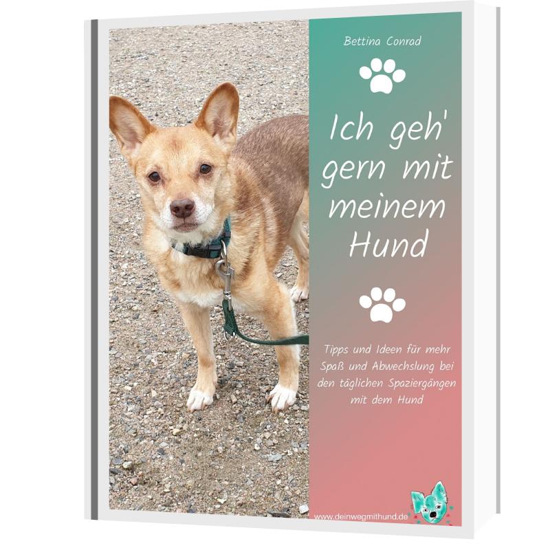 E-Book Hundespaziergang